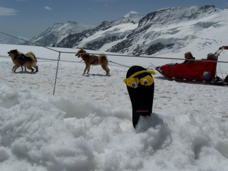 Sammy Sole on the highest mountain in Europe